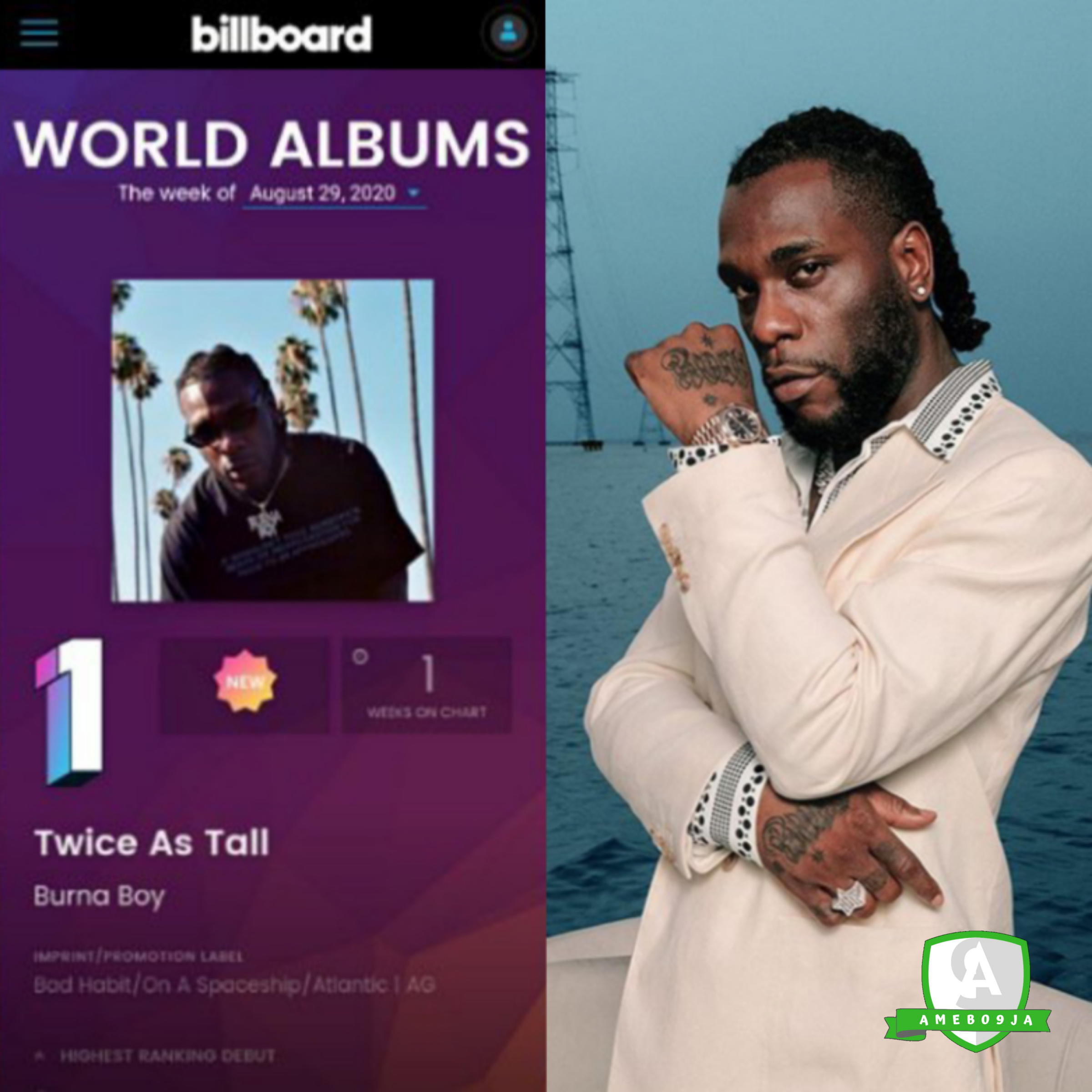 """Burna Boy album """"Twice As Tall"""" now No.1 in the whole world"""