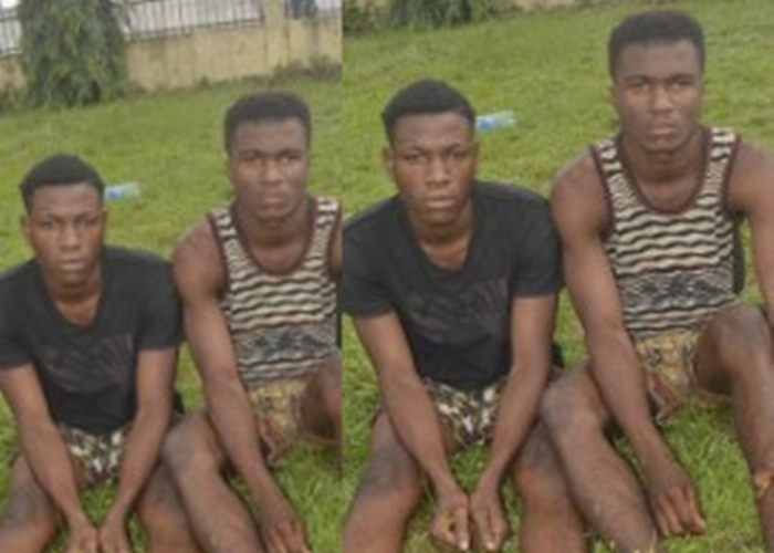 Wawu! 13-year-old cousin gang-raped by two siblings