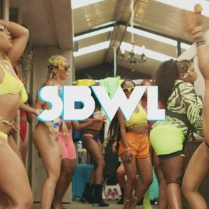 VIDEO: Busiswa ft Kamo Mphela – SBWL Mp4