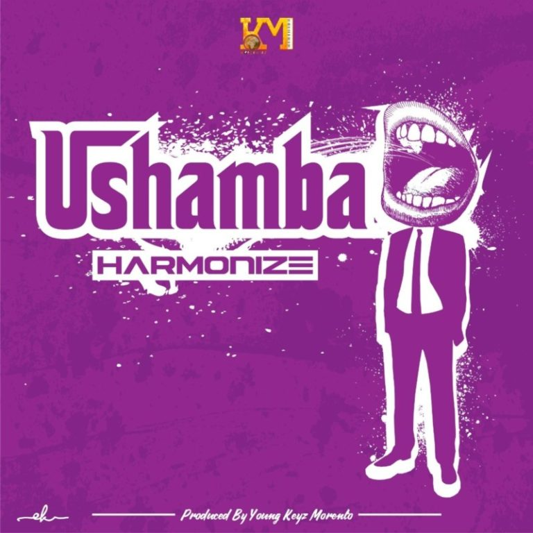 FULL LYRICS: Harmonize – Ushamba lyrics
